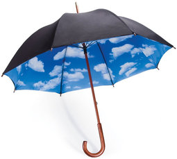 Umbrella Insurance Quote